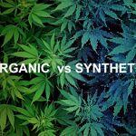 synthetic pot